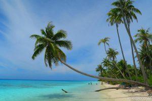 חוף בטהיטי ציולוO אביחי בן-צור