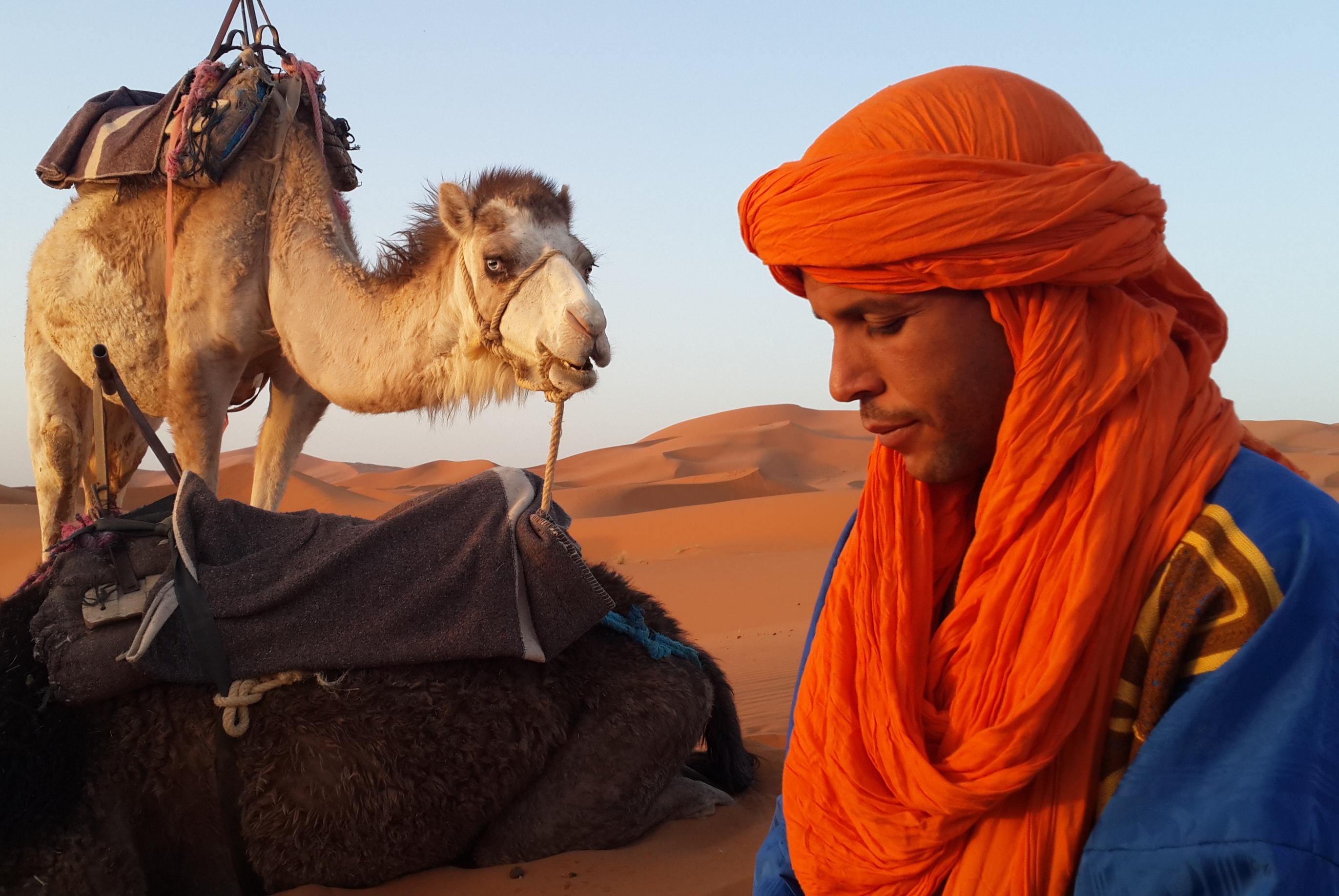 מוביל גמלים ברברי בסהרה צילום: אסנת פלג