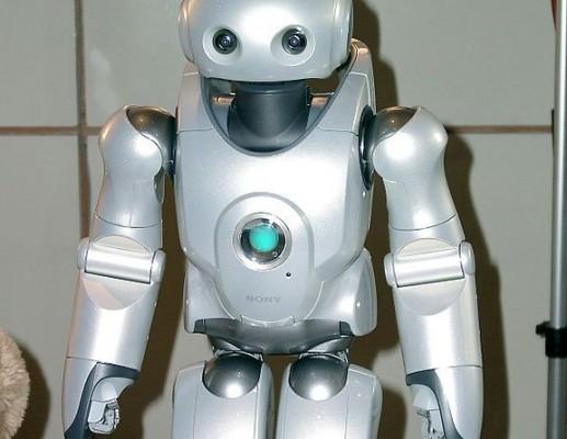 רובוט, או אדם: אייכה?