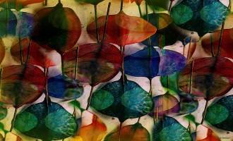 קוסמת הצבעים יוצאת לאור