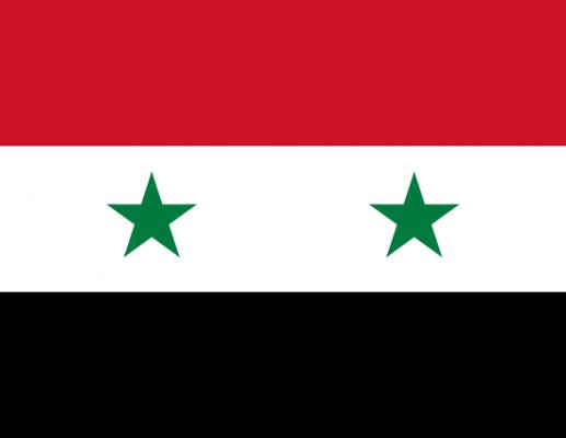 הישרדות – גרסת סוריה