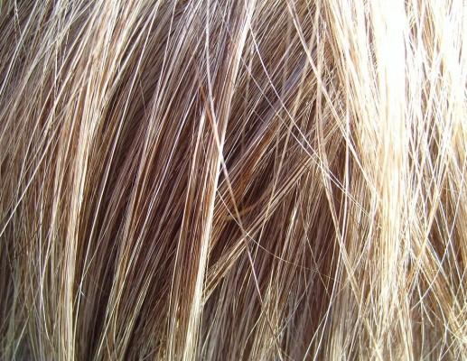 שיער פזור
