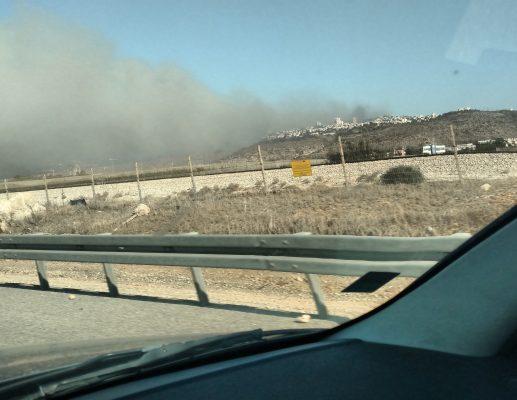 השריפה בחיפה ואני