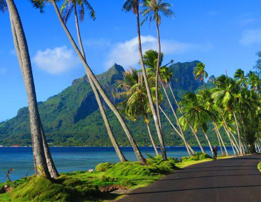 איי טהיטי: המסע המושלם לקצה העולם