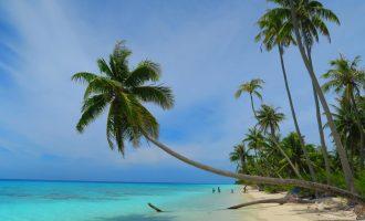 האטולים של איי טואמוטו – פולינזיה הצרפתית (8)